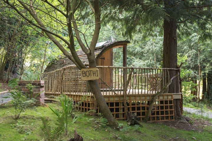 Bothi glamping pod/cabin at Celtic Woodland