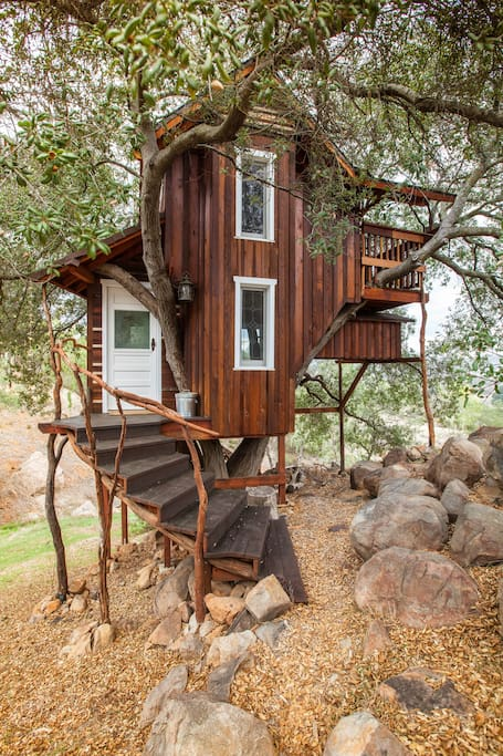 Stairway to treehouse