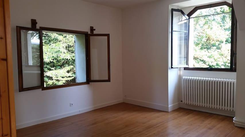 salon 2 fenêtres vue parcs parquet vitrifié