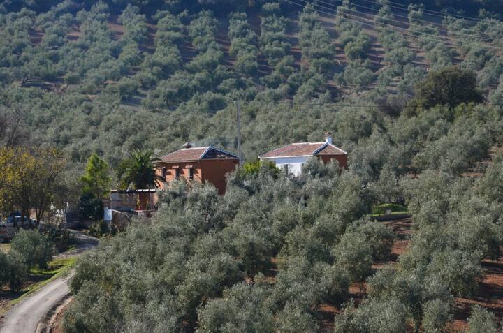 casa rural cortijo casamolin