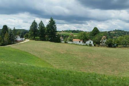 Countryside Villa Lazic - Valjevo - Vila