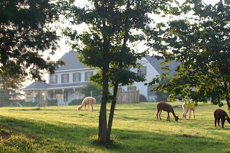 Paradise! Alpaca Farm, Maidens, VA - Maidens - Haus