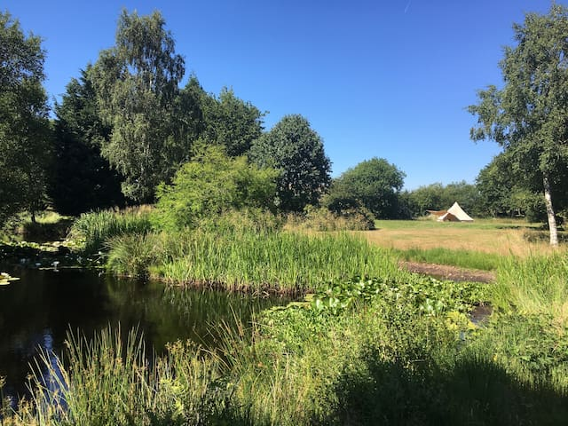 Luxurious bell tent set in glorious surroundings!