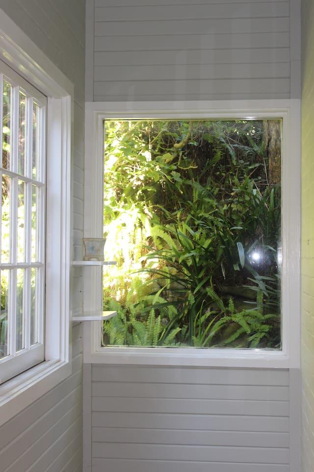 Private single room eastern suburbs