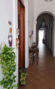 Casa Belèn @ Old San Juan - San Juan - Appartement