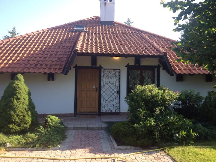 Three Bedroom House Zlatibor
