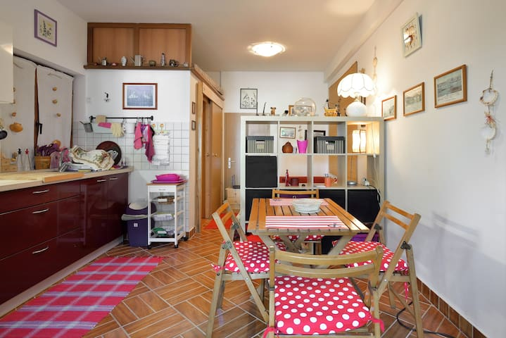 Kind, small love nest Izola Slovenia - Baredi - Apartemen