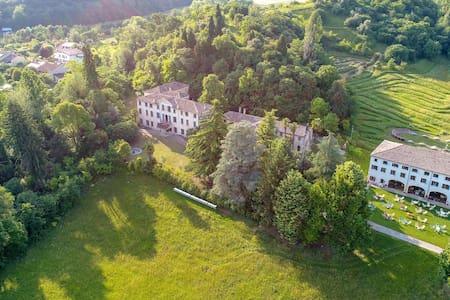 Villa Albrizzi- 6 -Historical villa near Asolo