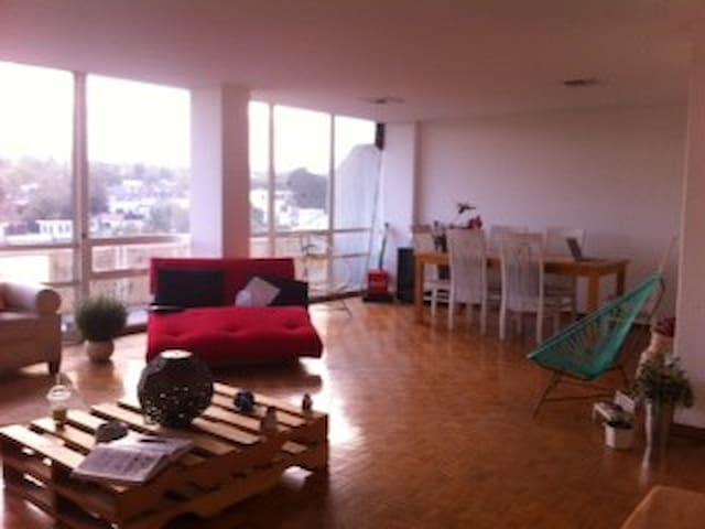 Nice room in great apartment! - Ciudad de México - Leilighet