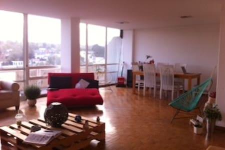 Nice room in great apartment! - 墨西哥城(Ciudad de México) - 公寓