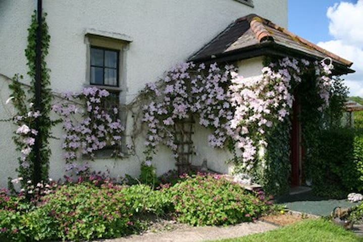 3 lovely b&b  bedrooms in country near erwood - Erwood - Bed & Breakfast