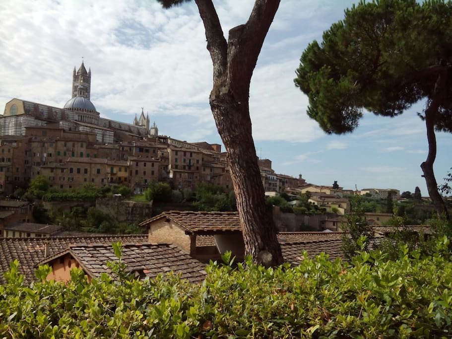 Panorama (400 m dalla mia nicchia) view 400 meters away from my niche
