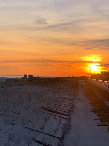 Long Beach Oasis
