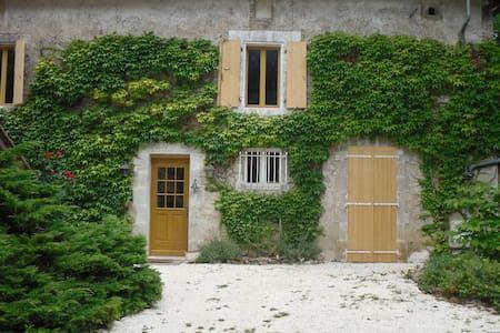 Grande Maison ancienne avec piscine sécurisée - Varaignes - Villa