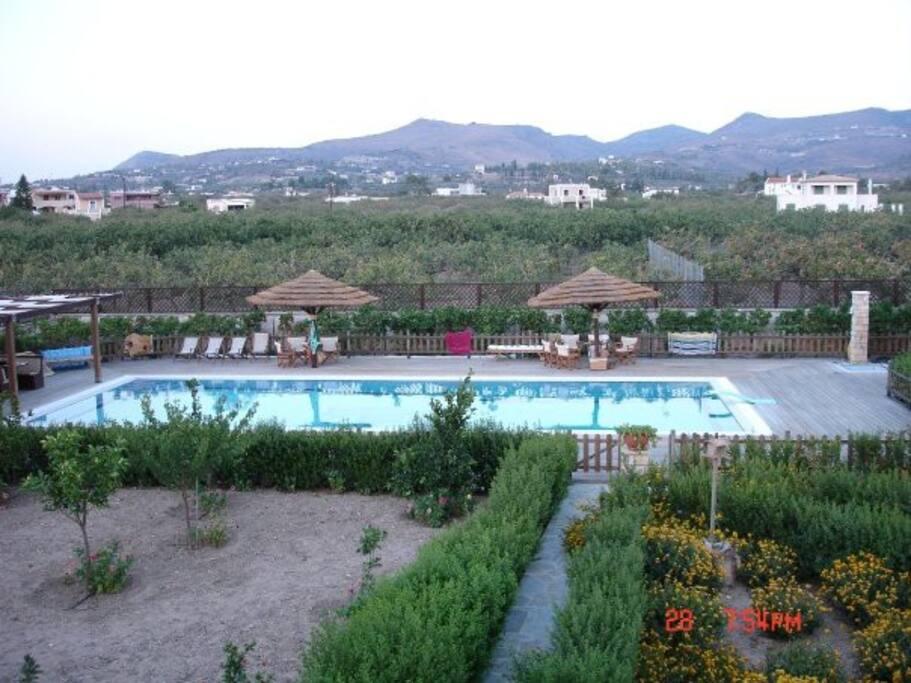 Swimming Pool & Garden