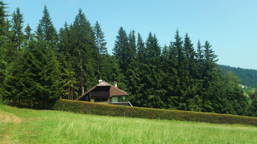 Holiday house with lawn and forest - Vitanje - Casa
