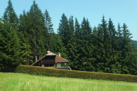 Holiday house with lawn and forest - Vitanje