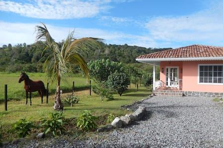 Very nice country house