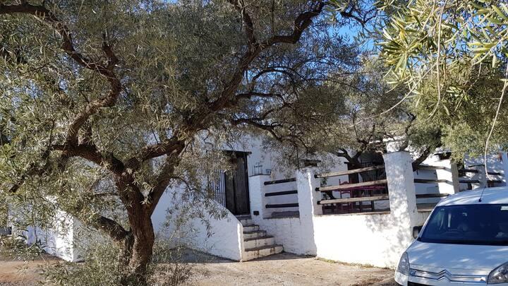 Gateway to Alpujarras