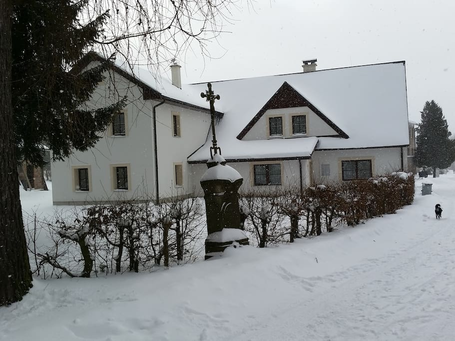 Zimy bývají v Olešnici kouzelné. Běžky můžete nasadit hned u chalupy a na sjezdovky to je 800m.