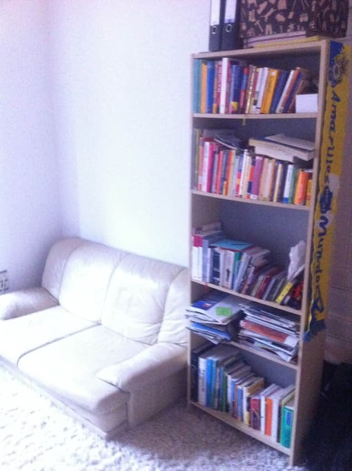 Book shelves and Sofa
