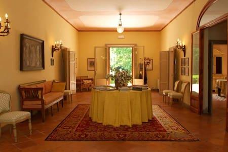 VACANZA DA SOGNO A VILLA CASTELLANI DI SERMETI - Sermide - Villa