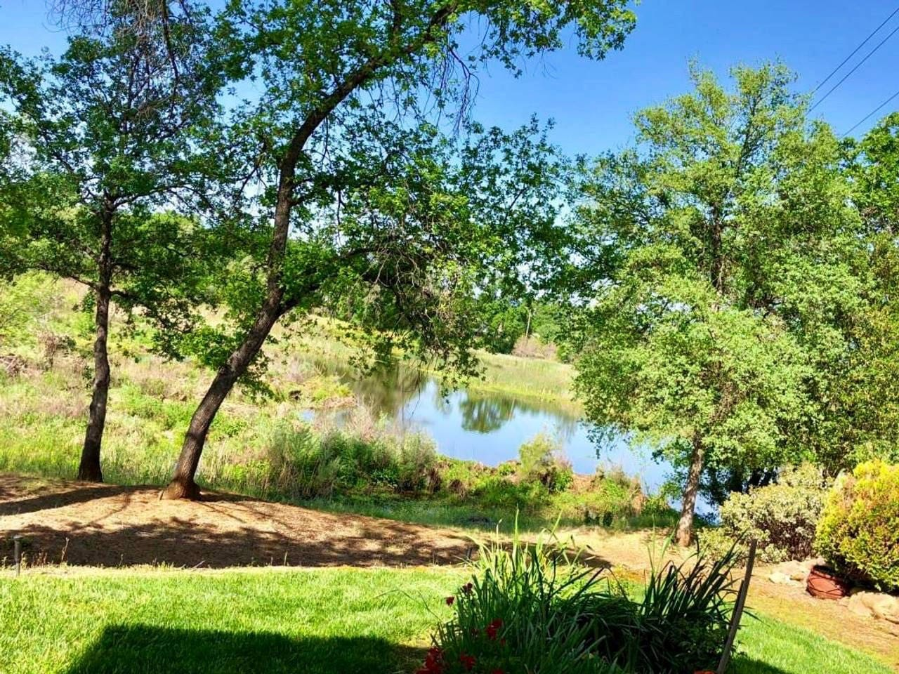 Relax outside in the backyard and enjoy Redding nature in a private setting.