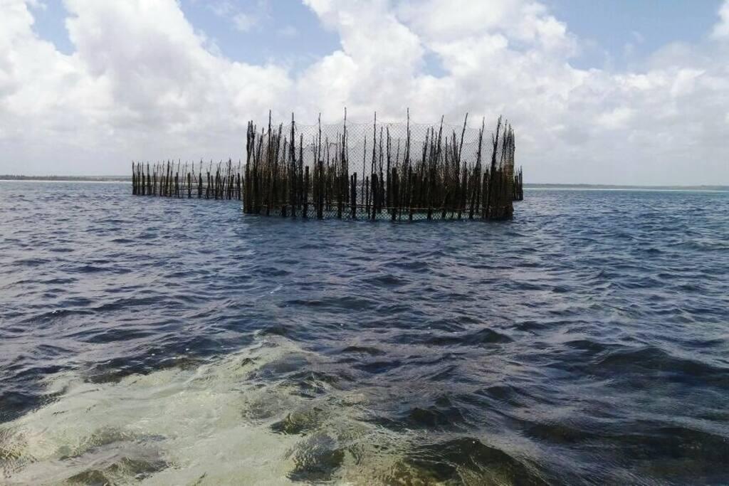 Currais de Pesca
