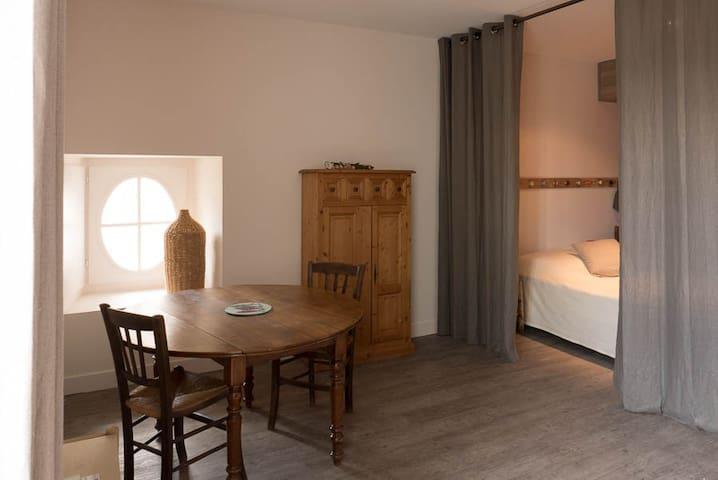 Grand Studio, Vannes Hyper-Centre - Vannes - Apartment