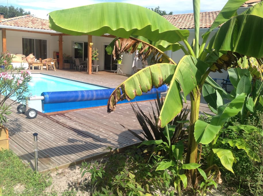 Jolie Villa Avec Piscine Proche Bassin Arcachon Houses