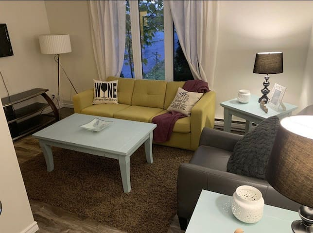 Paradise One Bedroom Apt With Double Sofa Bed