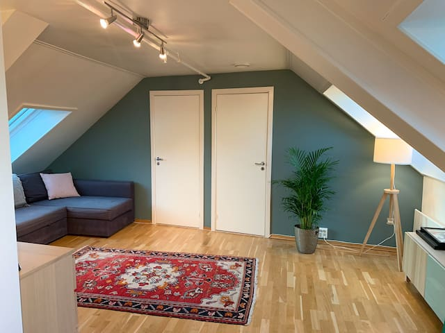 Central and cosy apartment with two bedrooms