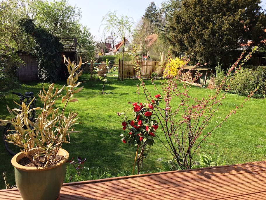 Haus mit Garten und Terrasse