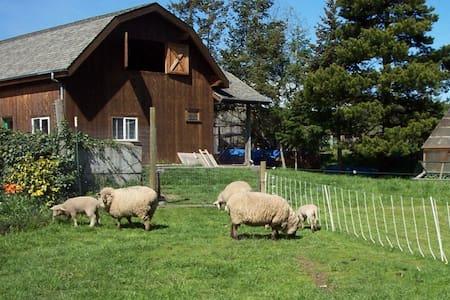 Homestead Farm Stay on Lopez Island - Lopez Island - Talo