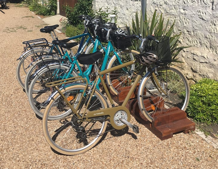 A sample of the bikes used