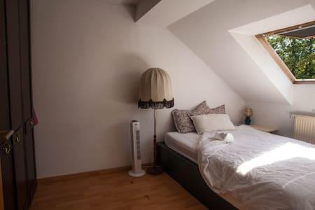 Sunny apartment in best location.