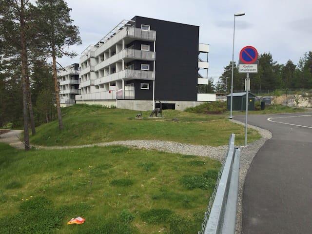Ny leilighet til leie - Oslo