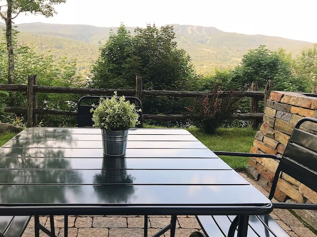 View from the terrace in the summer.  Vue de la terrasse en été.