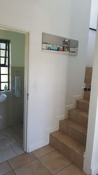 Stairs with small toilet under staircase.