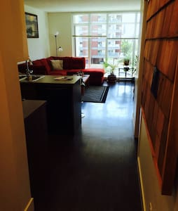 BEAUTIFUL NEW DOWNTOWN CONDO - Victoria - Wohnung