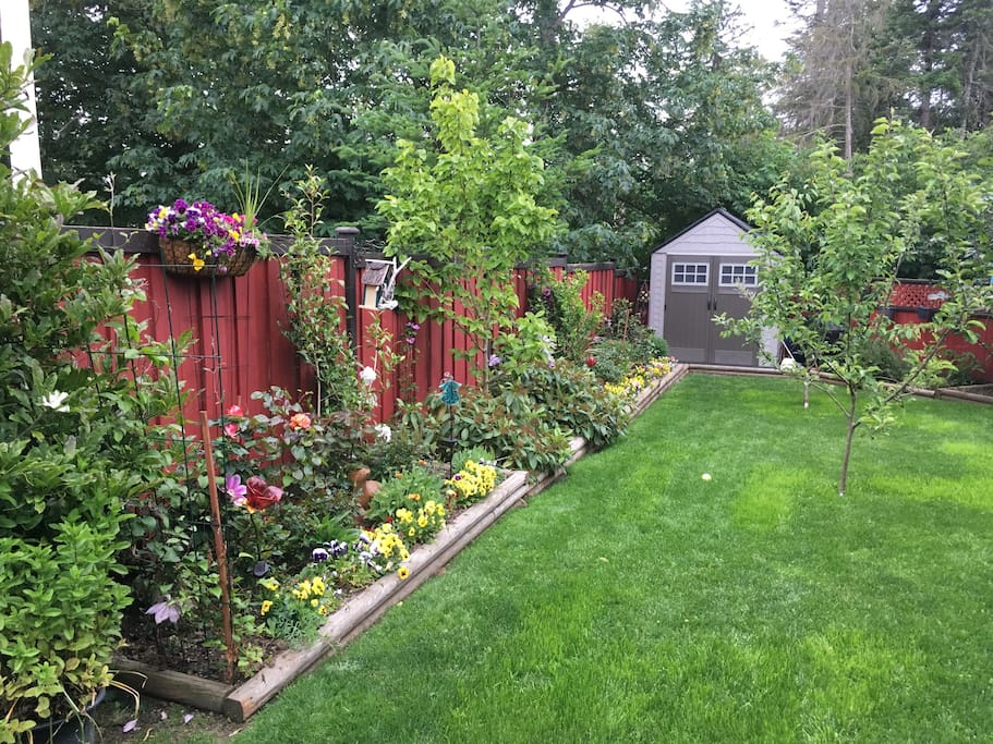A fully fenced private backyard with a lovely garden area. Sammy our 12 lb papillon,Pomeranian,Maltese has access to the back yard. We do our best to take care he does not pester our guests.  We have 2 zero gravity lawn chairs that are very comfortable to sit in and enjoy the quiet country air.