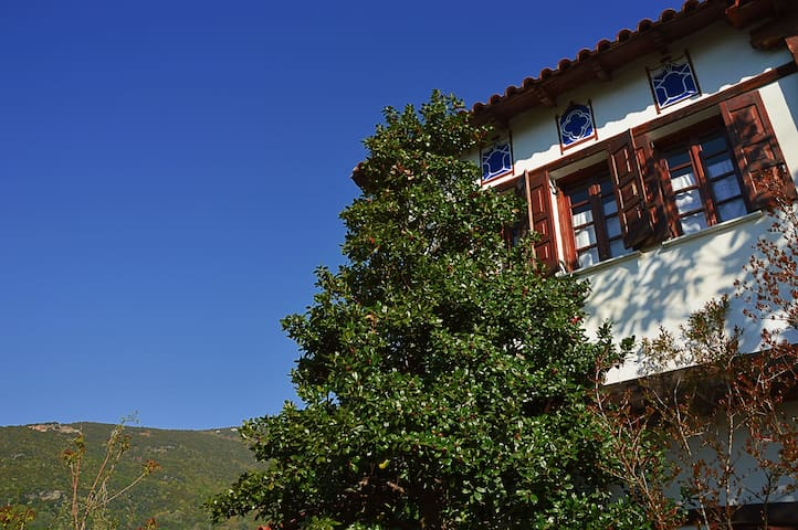 Traditional Pelioritic Villa - Drakia - House