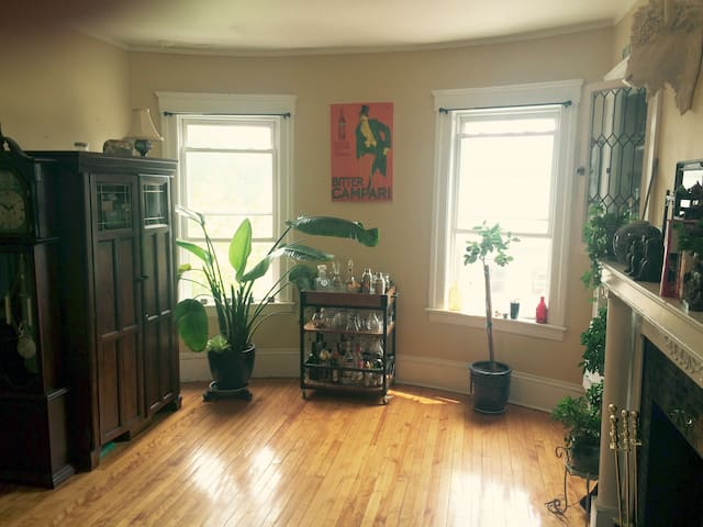 Cozy Historic & Central Location - Worcester