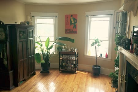 Cozy Historic & Central Location - Worcester - Apartment