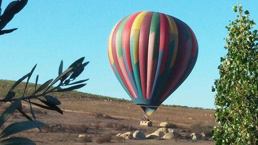A hot air ballon landing on the ranch - one of the fun things to do when you visit us.