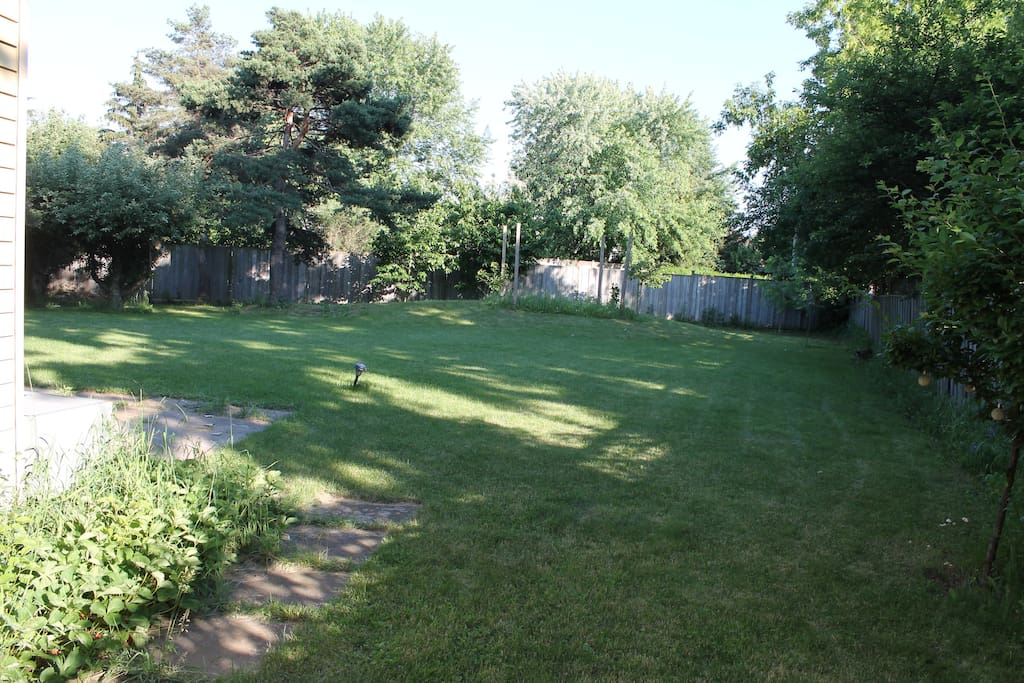 View of the backyard from right of the house.