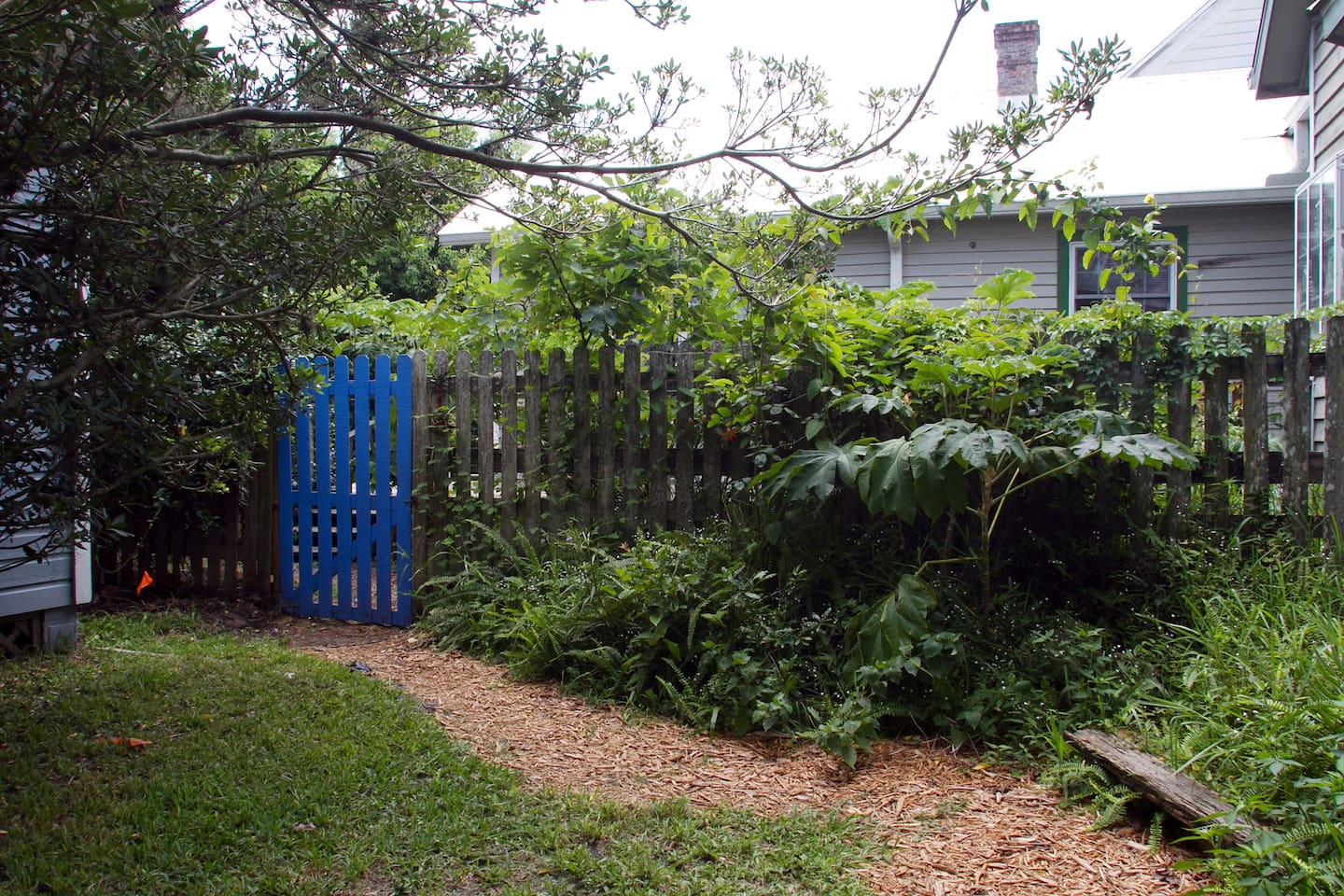 Blue gate entrance to back porch and yard