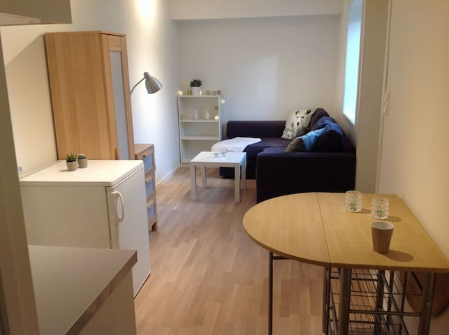 Smart mini-apartment in basement - Sandnes - Daire