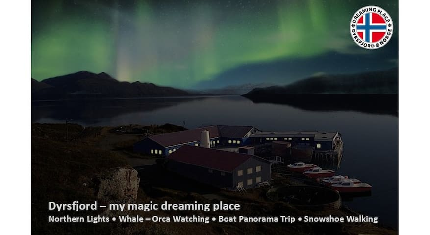 Dyrsfjord - my magic dreaming place - Hansnes - อพาร์ทเมนท์