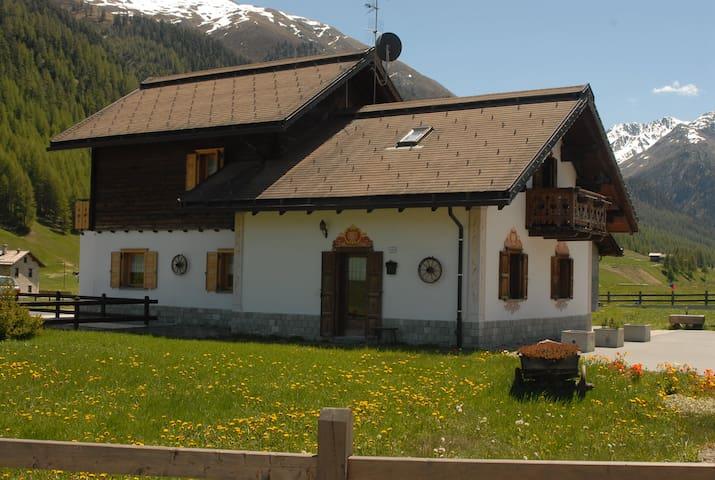 La Baita tra le Alpi  - Livigno - Apartment